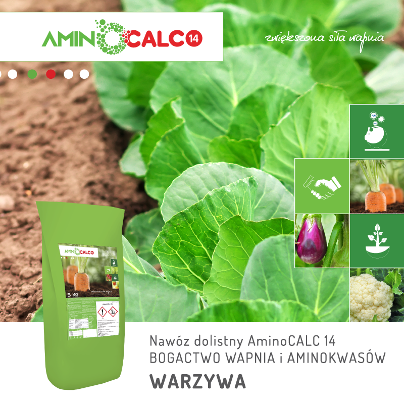 aminoCalc14-zwiekszona-sila-wapnia-aminokwasy-jpagro-warzywa-www